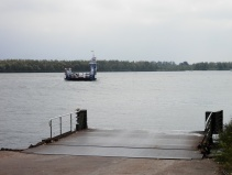Dordrecht-Biesbosch pontje.