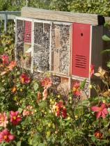 Zelf maken: Insectenhotel