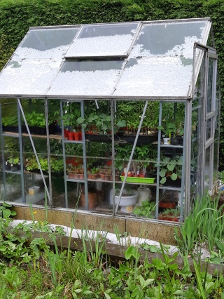 Kas greenhouse