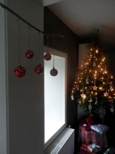 Duurzame kerstboom