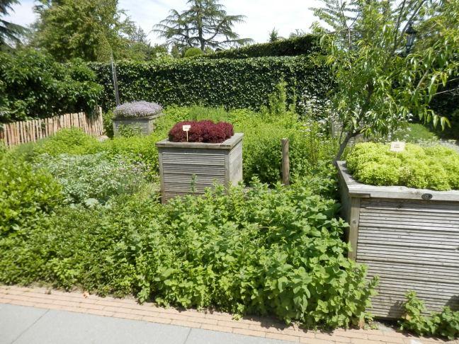 Tuinieren in verhoogde bakken