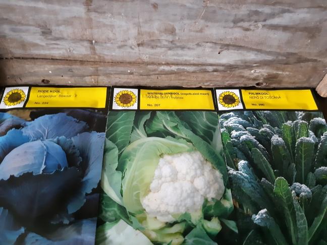 Moestuinzaden moestuinplan seeds