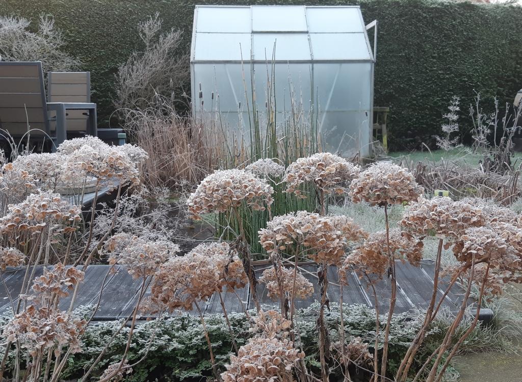 Greenhouse tuinkas
